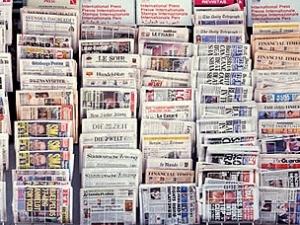 Novine velika